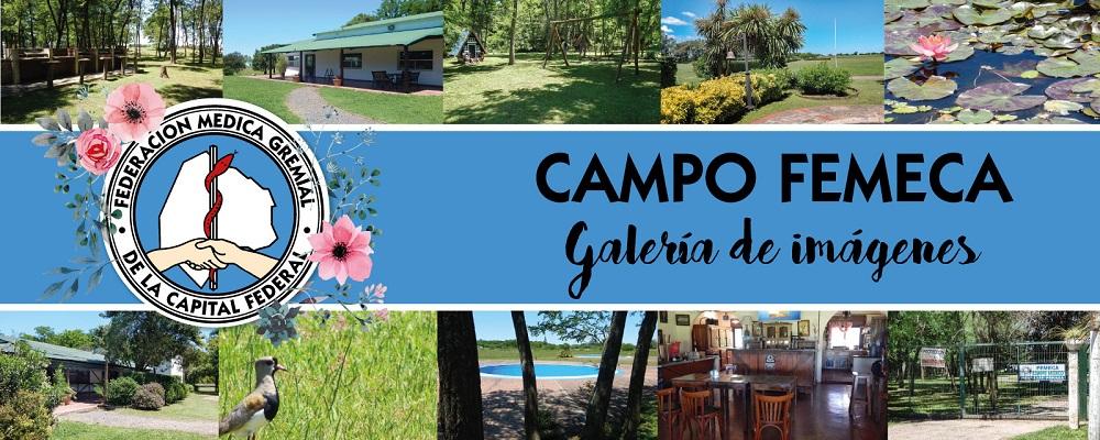 Campo de Femeca. Te esperamos para disfrutar el verano